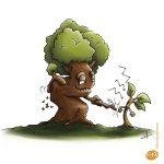 illustration_arbres_jeuneetvieux
